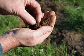 Soil Sample © Shutterstock