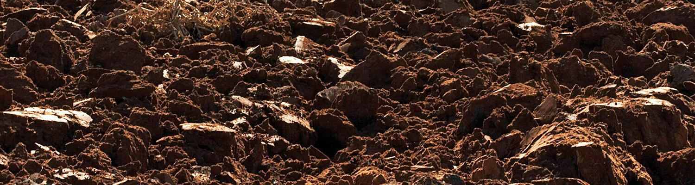 Soil © Shutterstock