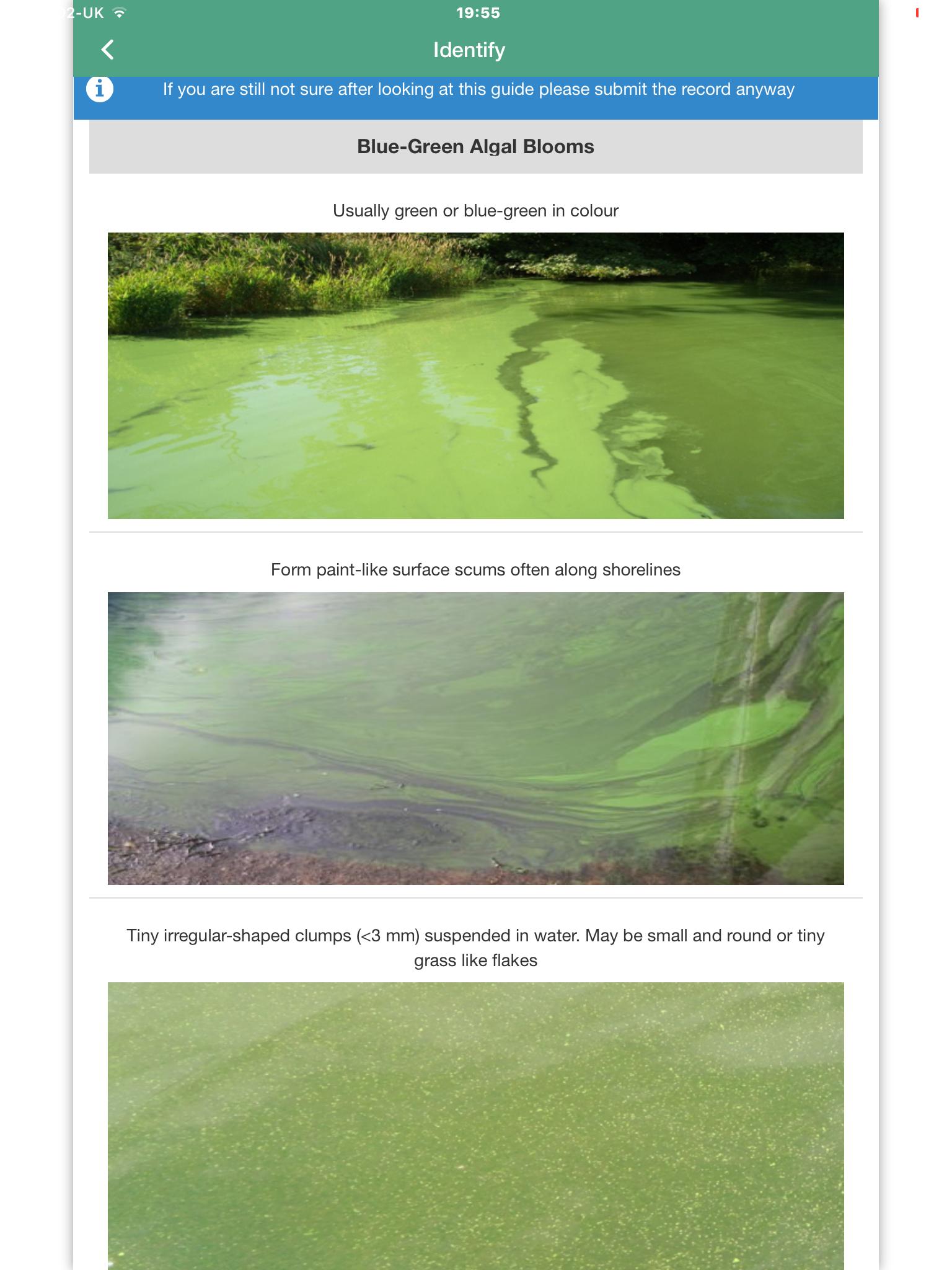 Bloomin' algae app - guide to blooms