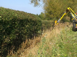 Hedgerow cutting with a flail
